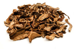 Dried Porcini. On a white background Stock Photos
