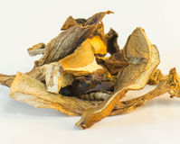 Dried porcini Stock Images