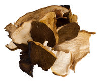 Dried porcini mushrooms, isolated over white backg Royalty Free Stock Photos