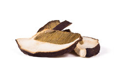 Dried porcini mushrooms Royalty Free Stock Photo