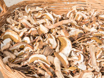 Dried porcini mushrooms in wicker bowl Stock Photography