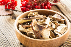 Dried porcini mushrooms Stock Images