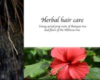 Traditional Herbal Hair Care Stock Photo Image Of Flowers Product