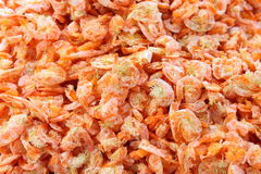Dried prawn or dried shrimp Royalty Free Stock Images
