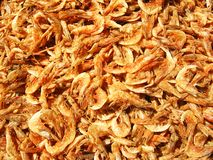 Dried Prawns Background Stock Photos