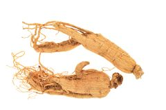Dried Preserved Ginseng Roots Stock Images