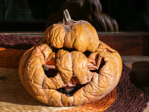Dried pumpkin for Halloween Royalty Free Stock Images
