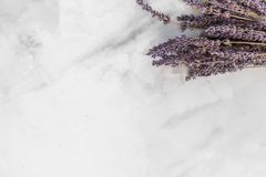 Dried purple lavender flowers laid on a white surface stock image