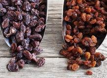 Dried raisins Turkish and Spanish (Malaga). Turkish raisins, Sultan raisins pitted . Raisins from Malaga with stones. Royalty Free Stock Image