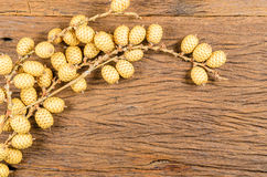 Dried of rattan fruit on wooden table Stock Photography