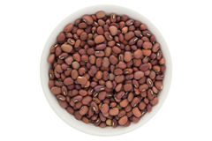 Dried red azuki beans in white bowl, isolated on white background Stock Images