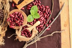 Dried red beans for cooking. Royalty Free Stock Photo