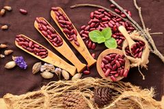 Dried red beans for cooking. Stock Photography