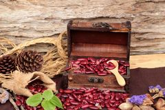 Dried red beans for cooking. Stock Photos
