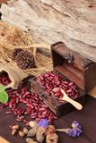Dried red beans for cooking. Stock Image