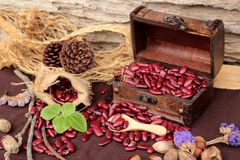 Dried red beans for cooking. Royalty Free Stock Photography