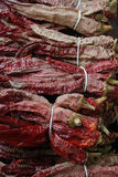 Dried red chiili. Pic of Dried red chiili,from macedonia, vezenka Royalty Free Stock Photography