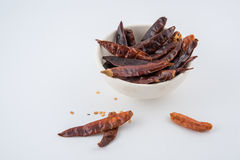 Dried red chili or chilli cayenne pepper isolated on white backg Royalty Free Stock Images