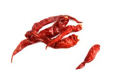 Dried red chili, Chilli red Spicy hot flavor, Chilli dry on white background. The Dried red chili, Chilli red Spicy hot flavor, Chilli dry on white background stock images