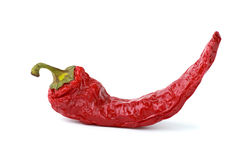 Dried red chili pepper Stock Photos