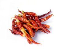 Dried red chili pepper. On white background Royalty Free Stock Photography
