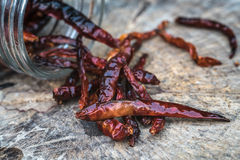 Dried red chili pepper on wooden background Royalty Free Stock Photos