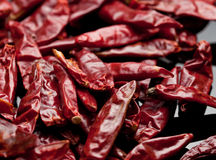 Dried Red Chili Peppers Stock Image