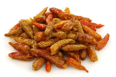 Dried red chili peppers (Capsicum) Stock Image
