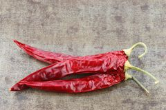 Dried red chili peppers Capsicum Royalty Free Stock Image