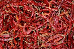 Red Chili Peppers. Dried Red Chili Peppers displayed at a Market In Bangkok. Could be used as a background Royalty Free Stock Photography