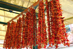 Dried red chili peppers hanging for sale Royalty Free Stock Photos