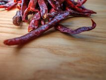 Dried red chili peppers on slate background. Ingredient for thai food on wood table background.  Royalty Free Stock Image