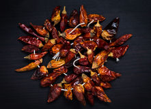 Dried red chili peppers on a string, black background Stock Photography