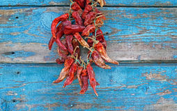 Dried red chili peppers on a wall Stock Photos
