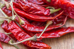 Dried Red Chilies. Dried red hot chili peppers close up image royalty free stock photos
