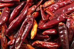 Dried Red Chilis Stock Images
