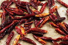 Dried red chilis Stock Photography