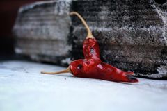 Dried red chilli. Royalty Free Stock Images