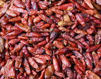 Dried red chilli pappers background Stock Photo