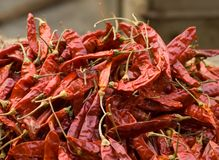 Dried red chilli peppers Royalty Free Stock Image