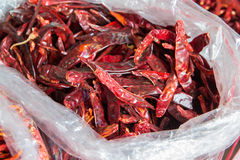 Dried red chilli for sale at market Stock Image