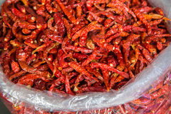 Dried red chilli for sale at market Royalty Free Stock Photo