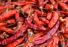 Dried red chillies as a textured food background. Royalty Free Stock Photos