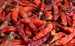 Dried red chillies as a textured food background. Stock Photo