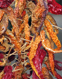 Dried red chillies Royalty Free Stock Images