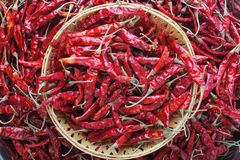 Dried red chilly PEPPER , food ingredient Stock Photos