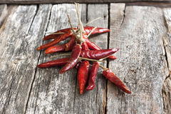 Dried red chilly pepper Royalty Free Stock Photos