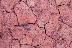 Dried red clay with large cracks Stock Photos