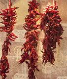 Dried red hot chili peppers Royalty Free Stock Images
