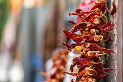 Dried Red Hot Chili Peppers hanging from the wall Royalty Free Stock Photography